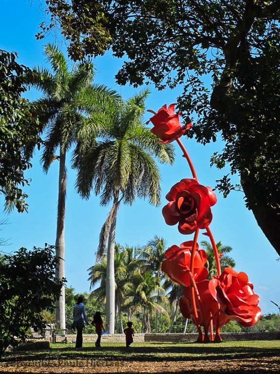 Fairchild Botanical Garden, Miami, Florida